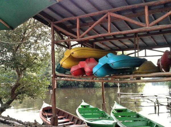 mangrove-jakarta