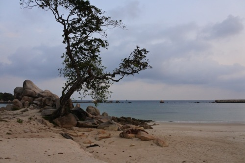 private-beach-bintan
