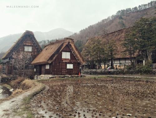 rumah-shirakawa-go