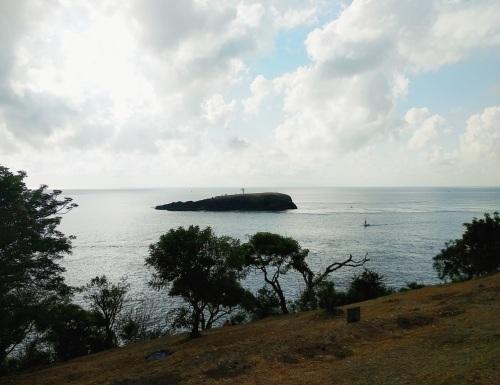 pulau-paus